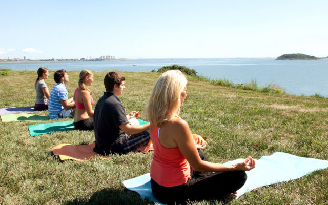 Spectacle Island Yoga