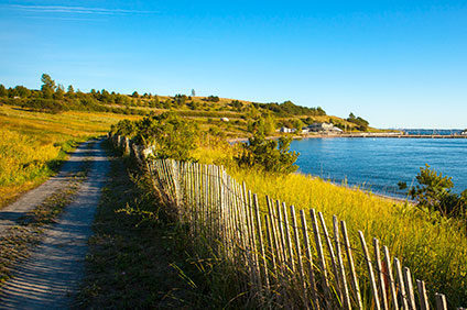 Spectacle Island Trail