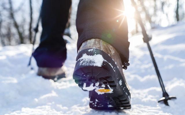 Winter Wander